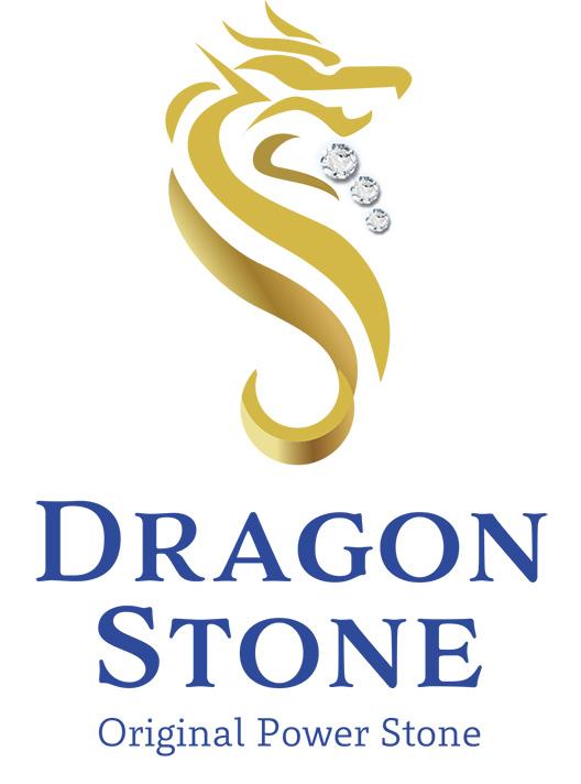 DS_logo_1_WEB